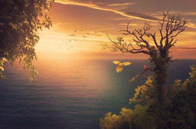 引き寄せたいなら、自分が見たい、素晴らしい世界を見よう!